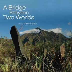 a_bridge_between_two_worlds_picture