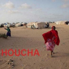 choucha_picture