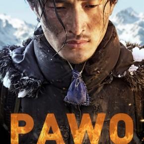 pawo_poster