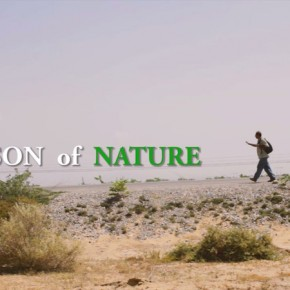 son_of_nature_picture