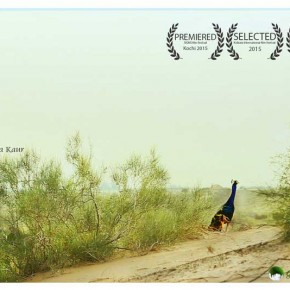 the_deertree_and_me_poster